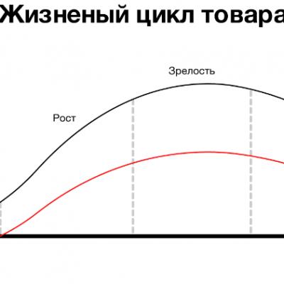 Жизненный цикл продукта: этапы разработки
