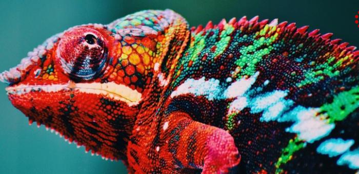Теория цвета в дизайне