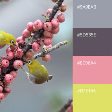 Цвет для сайта — какой выбрать